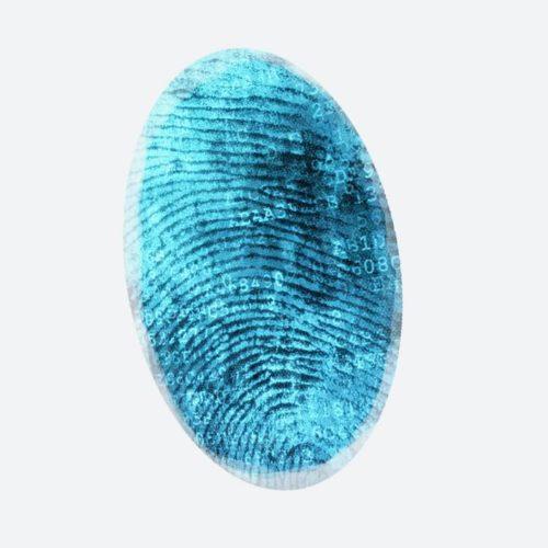 thumbprint-grey3